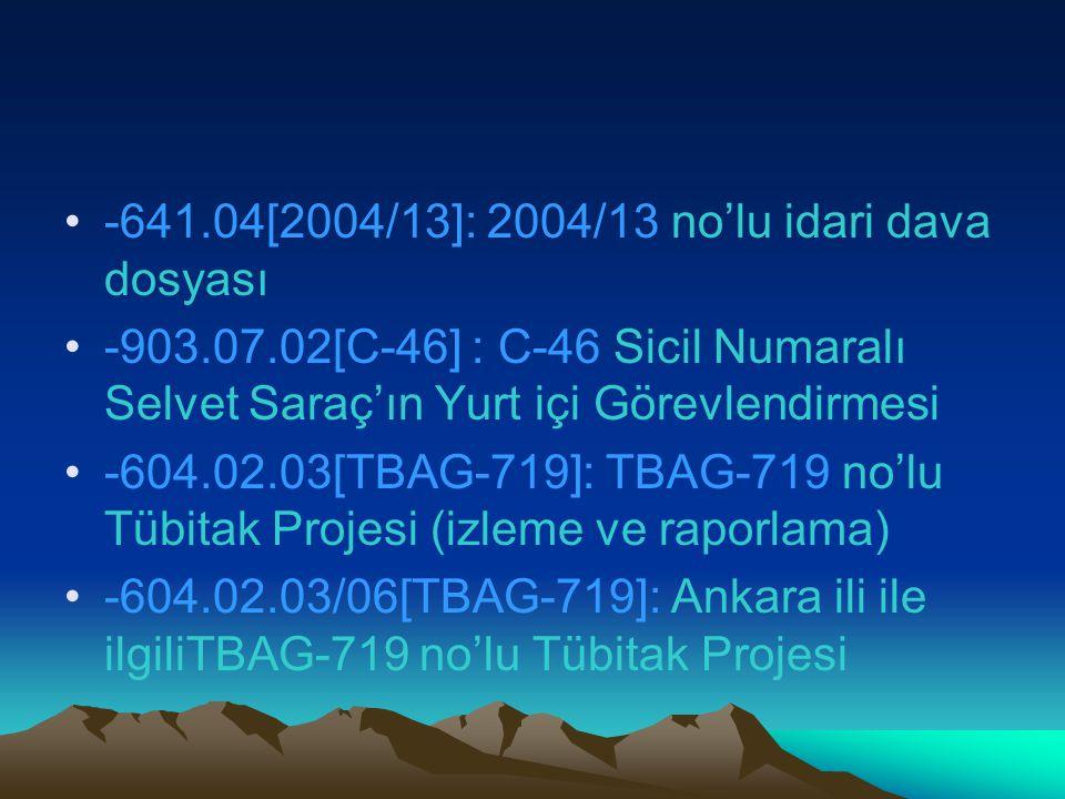 -641.04[2004/13]: 2004/13 no'lu idari dava dosyası
